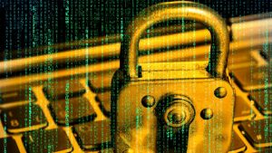 Bug Bounty Hunting - Offensive Approach to Hunt Bugs udemy course free download - ftuudemy.com