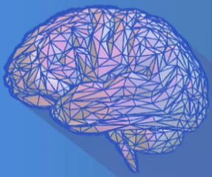 Neuroscience Synthesis To Rewire Your Brain Udemy