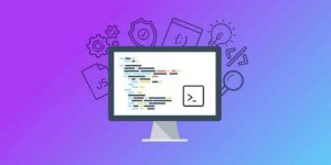 The Complete Junior to Senior Web Developer Roadmap (2020) udemy course free download - ftuudemy.com